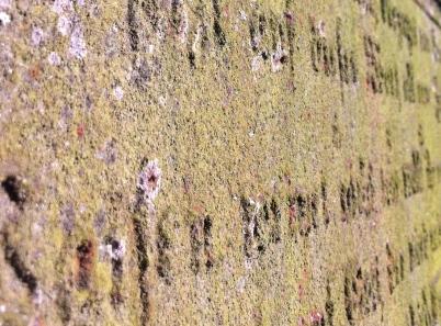 Grabkreuz Friedhof Beelitz-Schönefeld